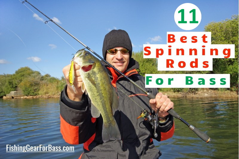 11 best spinning rods for bass