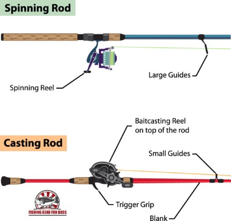 spinning and baitcasting rods